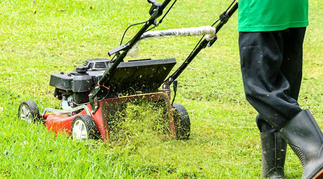 mowing your lawn tips