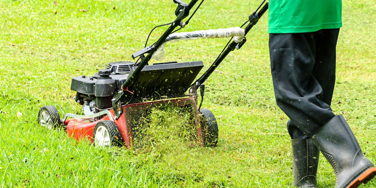 Mowing your lawn