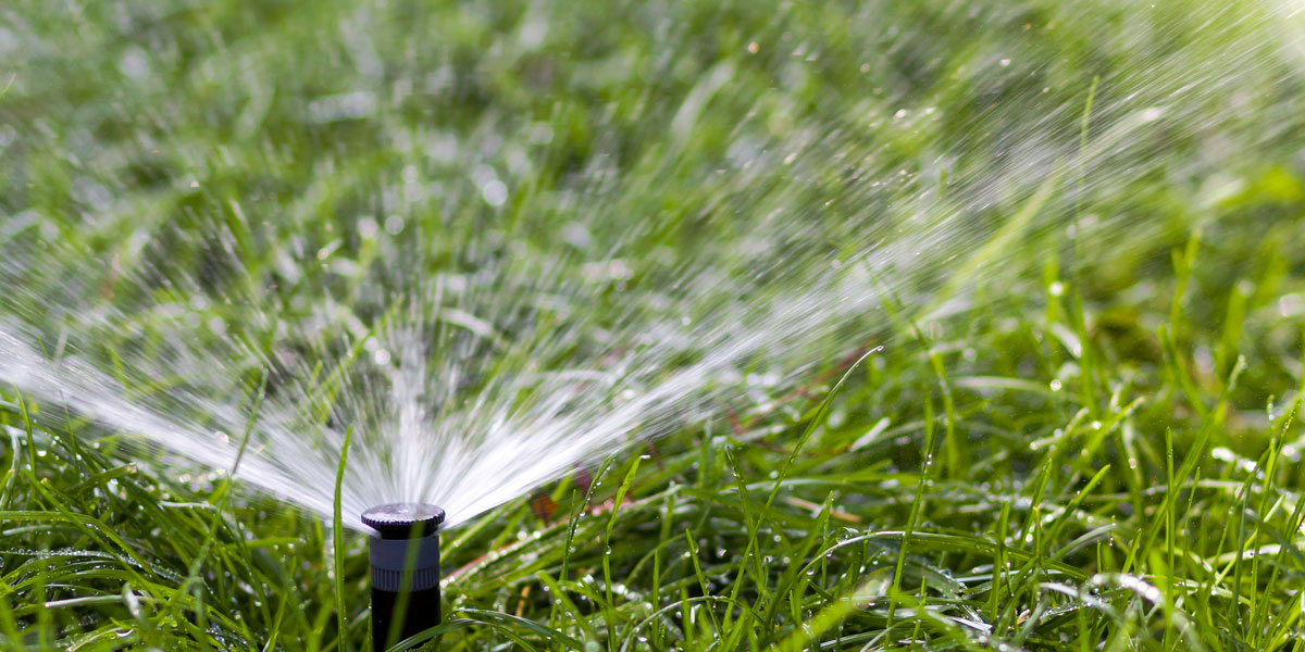 Watering your newly laid turf